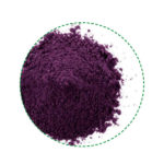 blueberry powder organic