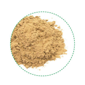 camu camu powder organic