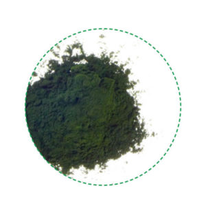 chlorella powder organic