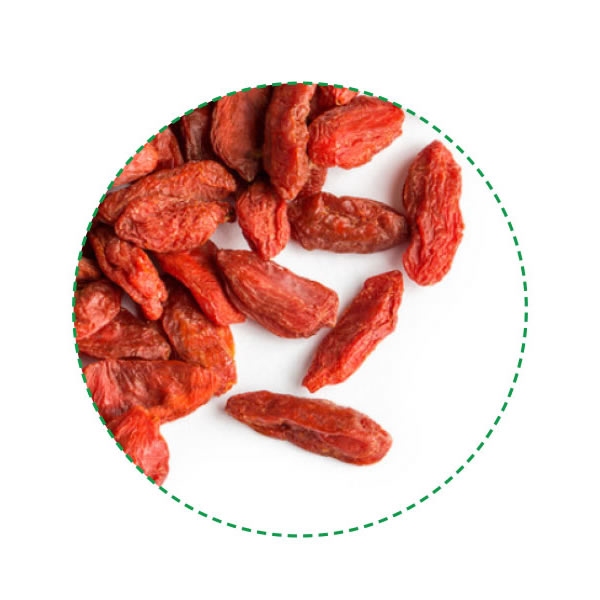 Goji Berries Z Company Natural Health Food Ingredients Wholesaler