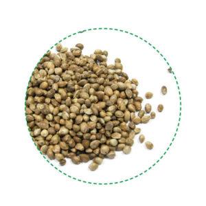 hemp seeds toasted