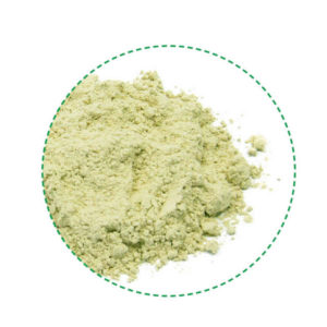 pea protein powder organic