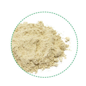 rice protein powder organic